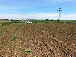 Güler Emlak Lüleburgaz Çiftlikköy,de E-5 Yakın Satılık tarla