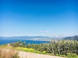 Kurşunlu'da Full deniz Manzaralı Asfalta Cephe Satılık 7.000 m2