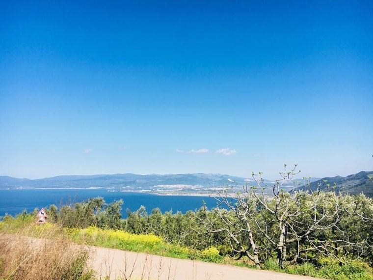 Kurşunlu'da Full deniz Manzaralı Asfalta Cephe Satılık 13.000 m2