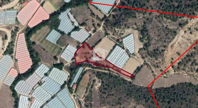 BANKADAN SATILIK Bilecik Söğüt'te Tarıma Elverişli 4955 m2 Bahçe