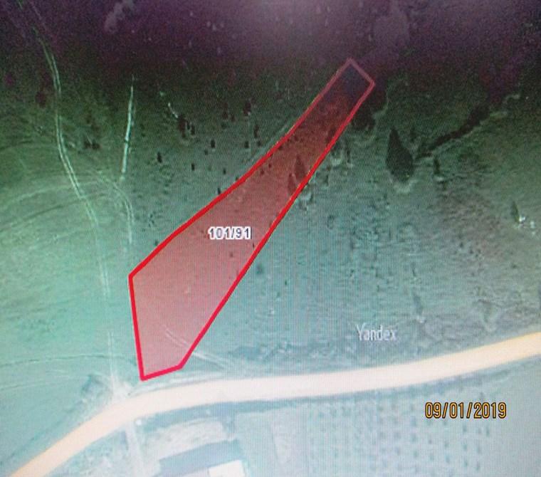 Kandıra Nasuhlar Köyünde Yola cephe 2418 m2 müstakil Tapulu