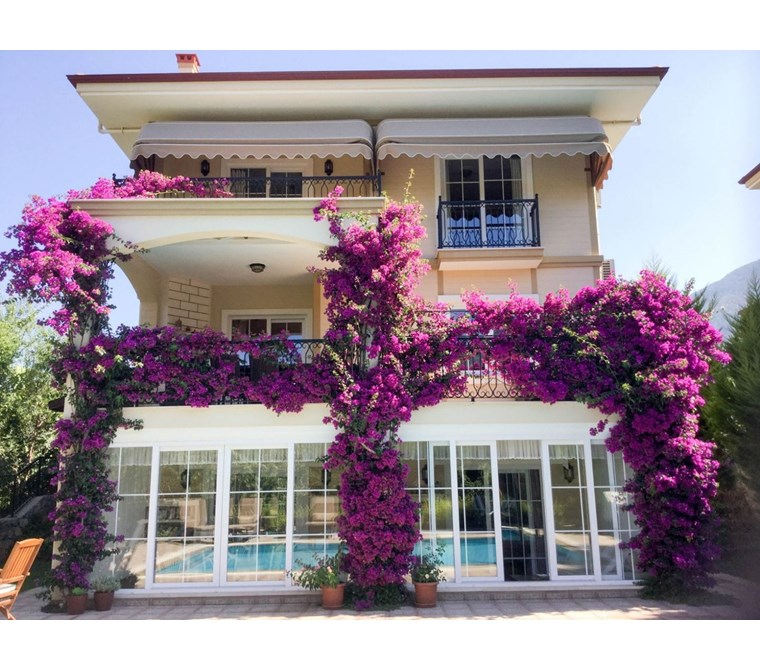 Located Oludeniz Ovacık area, for sale 4 bedroom private Villa