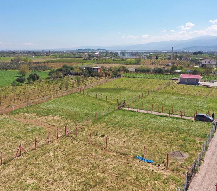 Kemalpaşa Yukarı Kızılca'da Satılık 3.889,20 m2 Bahçe