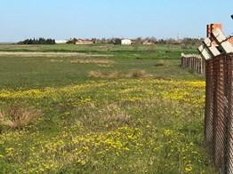 Lüleburgaz Müsellim köyünde Mera Cephe satılık Tarla