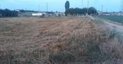 Lüleburgaz Celaliye Köyünde Konut İmarlı Arsa