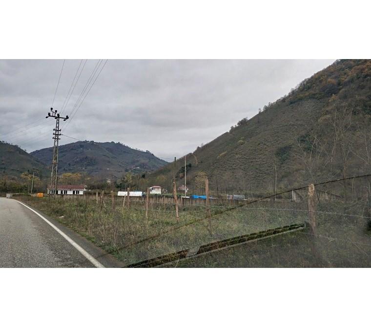 Satılık Arazi Ordu Altınordu Eyüplü 10.300m2