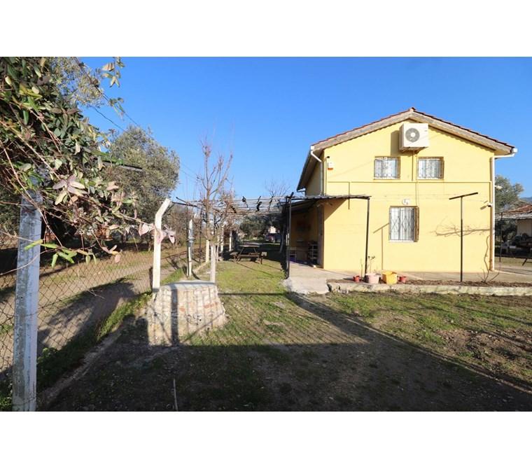 Kemalpaşa Armutlu'da Satılık 1.984 m2 Evli Bahçe