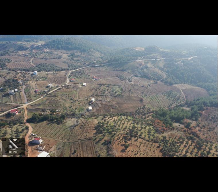 Kemalpaşa Damlacık'da Satılık Tapulu 760 m2 Bahçe