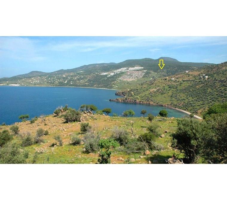 Acele Satılık Çandarlı'da 3 Villa'lık Arsa 400.000 TL
