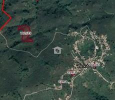 Düzce Akçakoca Aktaş Köyünde Satılık 1.750 m2 Fındık Bahçesi