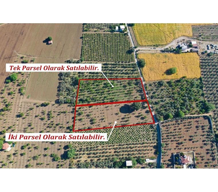 Kemalpaşa Armutlu'da Satılık 5.000 m2 Arazi