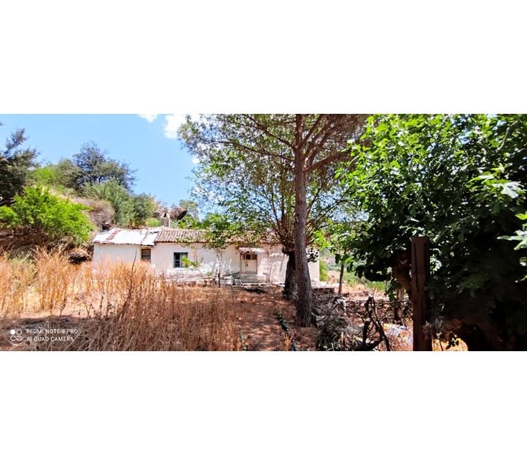 Söke ilçesi Kisir köyünde bahçeli müstakil köy evi