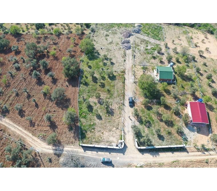 Kemalpaşa Kuyucak'ta Tapulu Satılık 472 m2 Bahçe