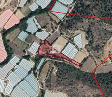 Bankadan Satılık Bilecik Söğüt'te Tarıma Elverişli 4955 m2 Bahçe