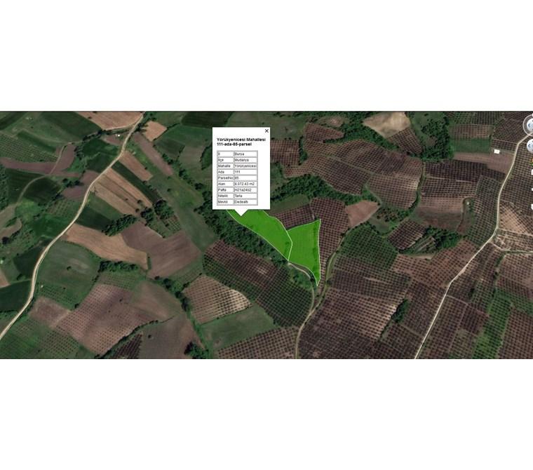 Mudanya Yörükyenicesinde Acil Satılık 14.800 m2 Yatırımlık Tarla
