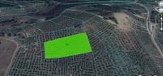Mudanya Yörükali'de Satılık 8.650 m2 Deniz manzaralı Satılık
