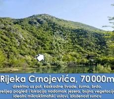 Crnojevica, Cetinje'de 70000m² Satılık Arsa