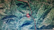 Ordu Ulubey Akoluk 30.402 m2 Satılık Fındık Bahçesi
