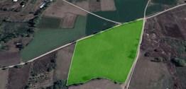 Nilüfer Yaylacıkta Kadastro yoluna cepheli 27.500 m2 Satılık Ara