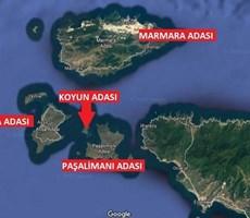 MARMARA'NIN İNCİSİ KOYUN ADASINDA SATILIK 13 DÖNÜM ARSA P-218552