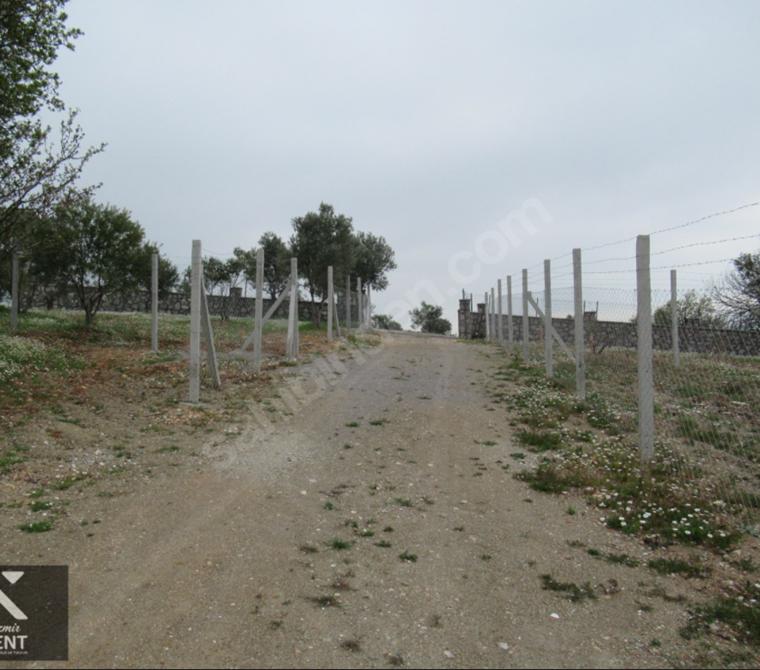 Kemalpaşa Kuyucak'ta Tapulu 236 m2 Satılık Bahçe