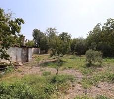 Kemalpaşa M. Akif Ersoy'da Satılık 5.300 m2 Arazi