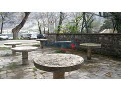 APARTMENT AND COMMERCIAL OBJECT IN MUO, KOTOR BAY - 1