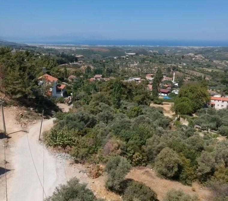 Ağaçlı'da panoramik deniz manzaralı zeytin bahçesi