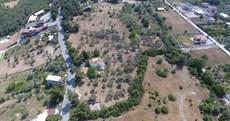 İzmir Bornova Yakaköy Satılık 14000m2 Zeytinlik Arsa