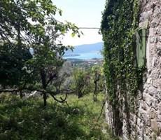 Kotor'da 4500m² Deniz Manzaralı Eski Taş Evler Bulunan Satıl...