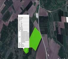 Nilüfer Çatalağıl'da Asfalta Cephe Satılık 41 Dönüm Kıymetli Ara